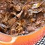 Thumbnail image for Boneless Short Rib Ragu