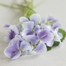 Thumbnail image for Candied Wild Violets